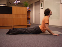 MDT Physical Therapy Extension 3